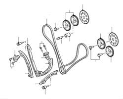 Timing Chain & Gear