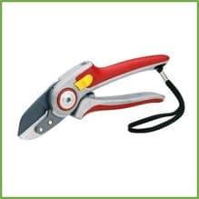 Cutting & Pruning