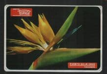 Canary Islands Hotel label luggage labels baggage #040