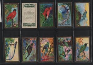 Cavanders cigarette cards FOREIGN BIRDS 1926  set