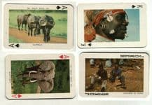 Collectable vintage playing cards African Wildlife, Elephants, Lions, Giraffe