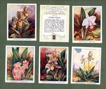 Collectible Cigarette cards set Orchids 1925  large size by Carreras