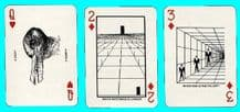 Collectible Non-standard playing cards optical illusions
