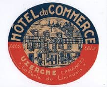 Rare Hotel label luggage labels old FRANCE pretty #301