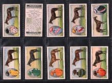 Tobacco cards Cigarette cards Prominent Racehorses 1933