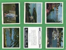 Tobacco Cigarette cards Around & About Jersey set
