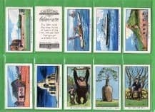 Tobacco cigarette cards Believe it or NOT, 1934
