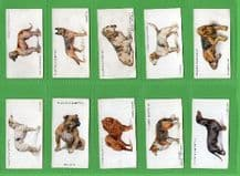 Tobacco Cigarette cards Dogs 1931 by  Wardle