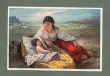 Victorian advertising trade card Beautiful image #196