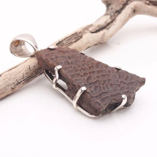 Fossil Turtle Shell Pendant